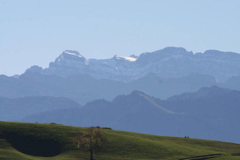 Aussicht auf die Alpen